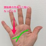 頭脳線(二股)
